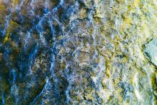 Topazio azzurro e giallo, 2016, Aldo Salucci  - Irma Bianchi Comunicazione