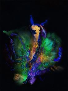 Farfalla, 2011, Marialuisa Tadei - Irma Bianchi Comunicazione