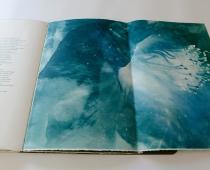 Alessandra Angelini, Il Giardino è aperto, libro d'artista, 2015