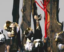 Maria Cristina Carlini, La mia Wunderkammer, 2013, grès, smalto, oro, legno di recupero, cm 180x250x300