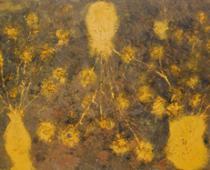 Miquel Barceló, Trois Tournesols, 1998, tecnica mista su tela, cm148x251
