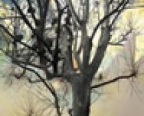 Milena Barberis, Una nuvola di polvere soffoca, pittura digitale su p.v.c. cm 70x80